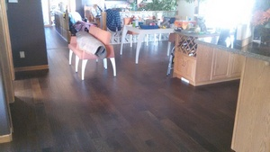 Devon Flooring Reno Gallery